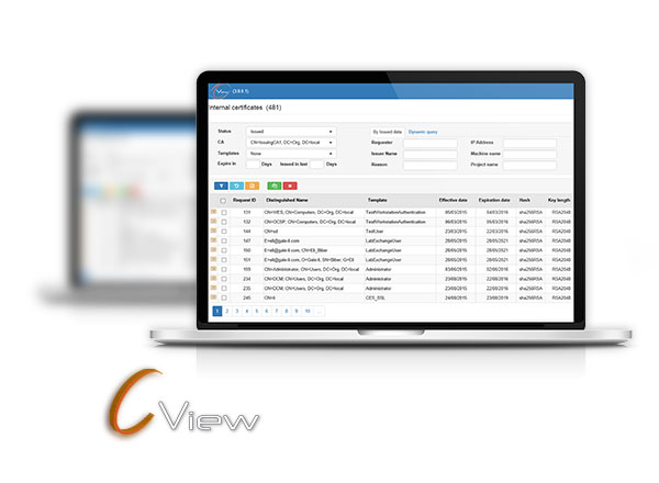 C-View Professional certificates lifecycle management
